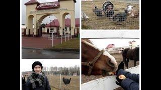 Позитивное видео о посещении центра экологического туризма СТАНЬКОВО