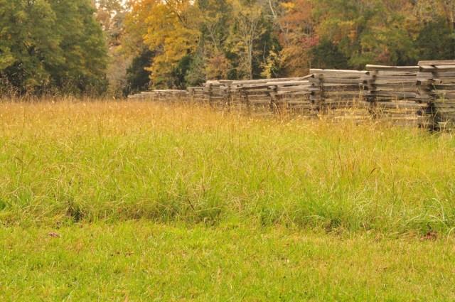 Field at Chickamauga Battlefield