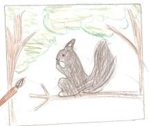 Squirrel by Miko, grade 4, Vancouver