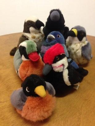 toy birds