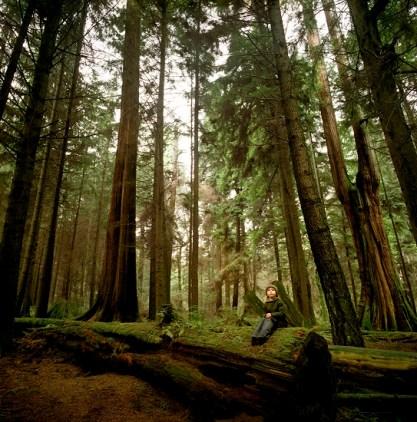 Aidan Forest