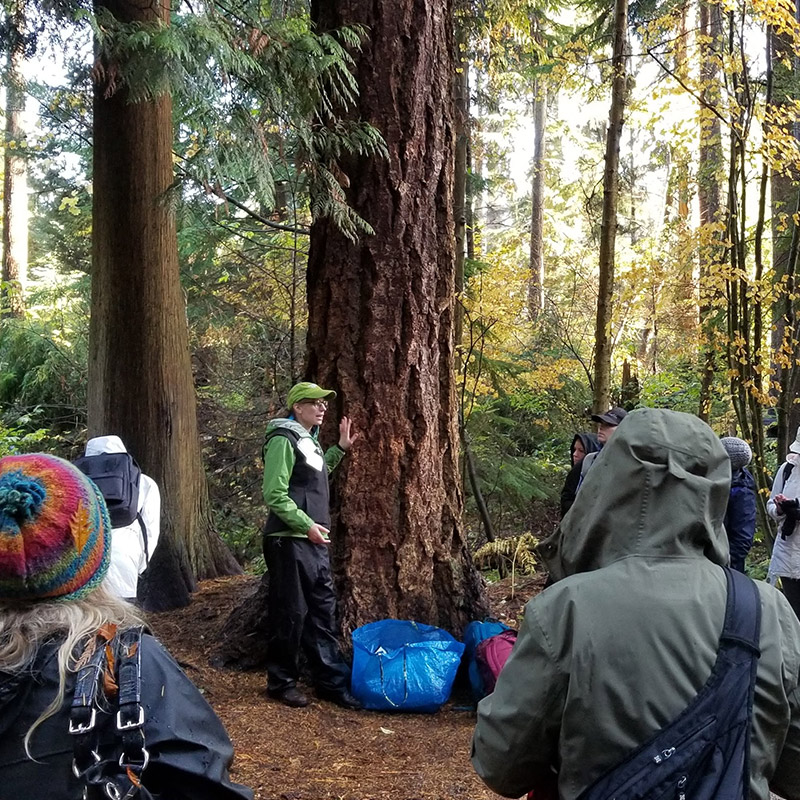 Hands-on learning in Stanley Park