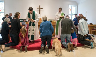 2016 Blessing of the Animals: Communion