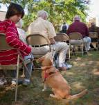 blessing_of_the_animals-20111009-RM_111009_1431_0