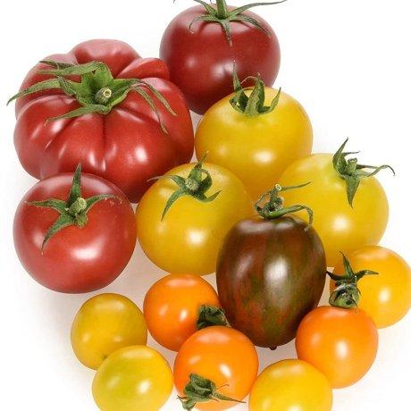 IOW_tomatoes