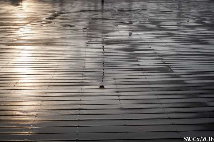 After the rain 1