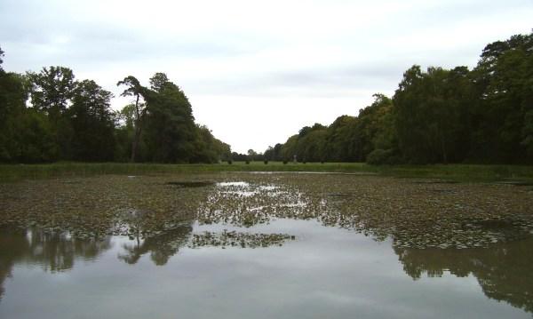 Tuatha De Danann Pronunciation - Year of Clean Water