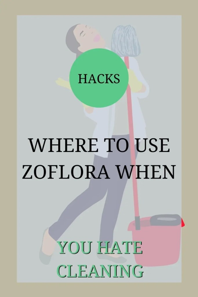 The image a cartoon image of a woman dancing and singing with a mop in her hand. The text over the image reads: 'Hacks: where to use Zoflora when you hate cleaning'.