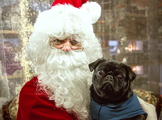 Salty's and Fang and Feather owner NAncy Delem makes a very convincing – if skinny – Santa. (Salty's Pet Supply)