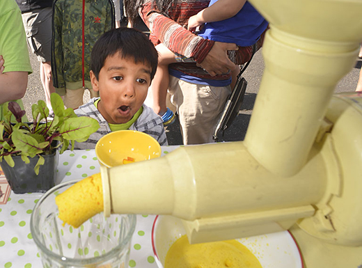 Hollywood Farmers Market connects kids to their food