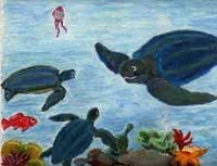 Artwork from Tilly the Turtle by John Borely.