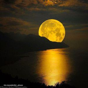 golden super full moon rises_n