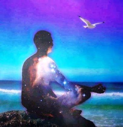 starry-meditator-and-seagull_n