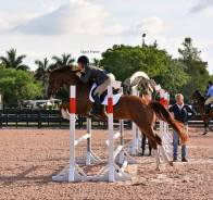 Schooling Grady at WEF Spring 3