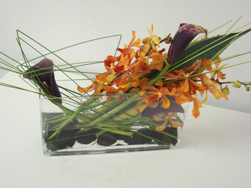 Vanda Orchids and Eggplant Mini Calla Lilies - By Starbright