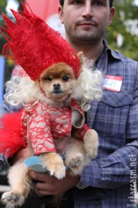 PHOTOS Top 10 dog costumes at 2011 Tompkins Square Park ...