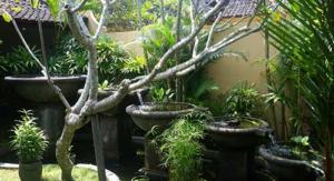 Spa Two Garden