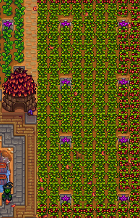 Junimo Hut  Stardew Valley Wiki