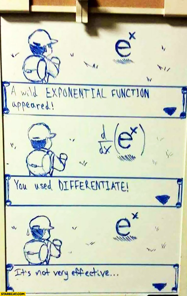 A Wild Exponential Function Appeared You Used