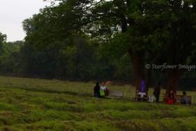 Lavender fieldIMG_2659_1024