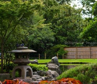 Kyoto Gardens_2527_1024