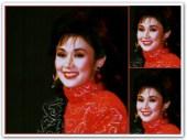 ARTICLES - Vi Circa late 1980s