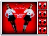 ARTICLES - Vi Waltzing
