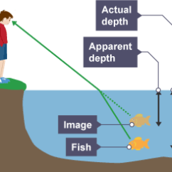 Reflection Ray Diagram Ks3 Hsh Pickup Wiring Rays And Waves   Star Guy Blog