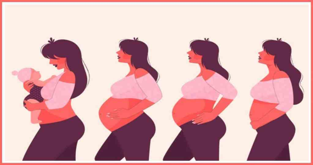 body changes during first trimester of pregnancy