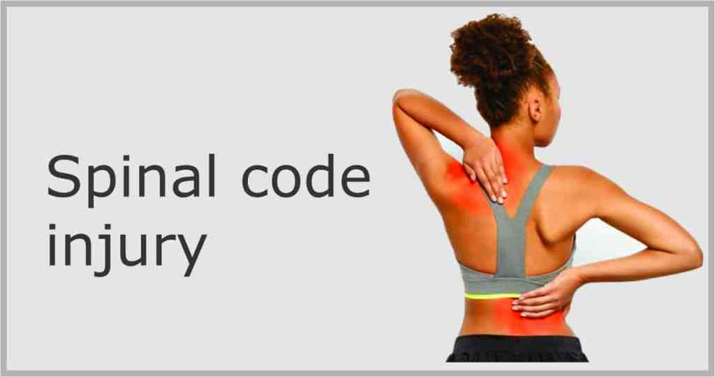 how does spinal cord injury affect the body ?