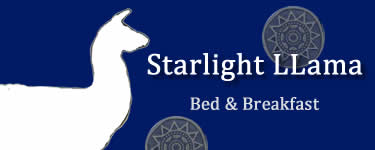 Starlight Llama Bed & Breakfast Logo