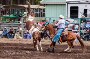 Ketchum Kalf Rodeo 7307