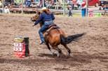 Ketchum Kalf Rodeo 7695