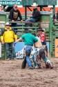 Ketchum Kalf Rodeo 7920