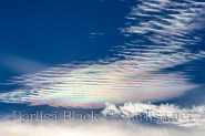 Iridescence_WM_882 - Copy