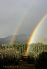 Rainbow2_5851_20090108