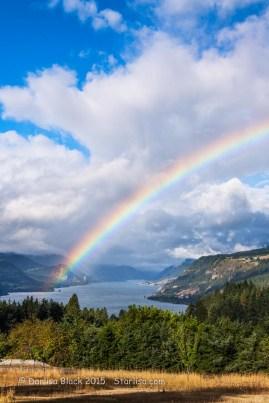 rainbowguardian_4031