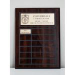 Awards - Perpetual Plaque