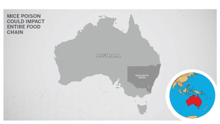 Map of New South Wales, Australia.