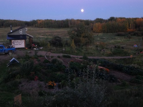 Night before the full moon and convergence