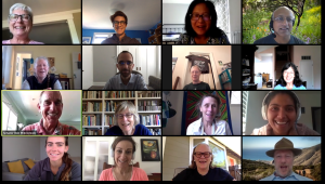 Screenshot of a zoom call of a climate meeting