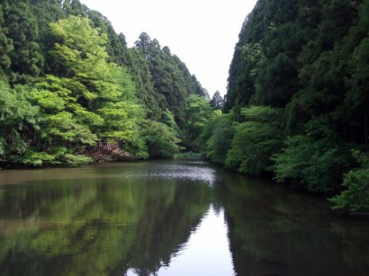verdant hills thick with trees, surrounding a stream in Hakone, Japan
