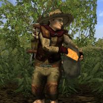 Harfoot Settler