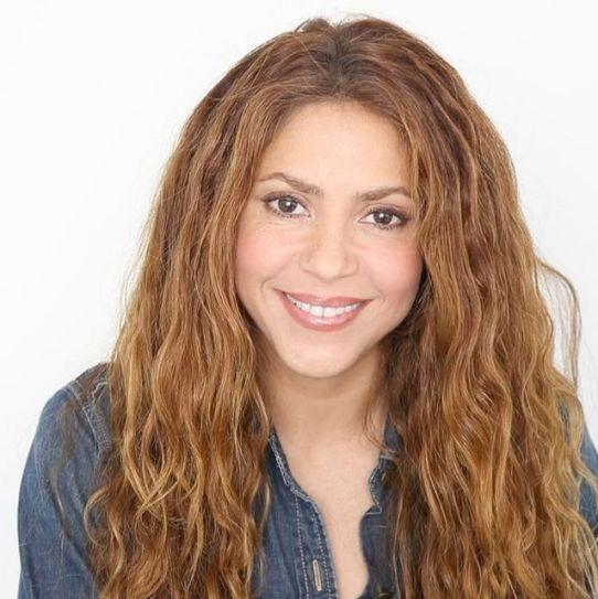 Shakira-real-occupation