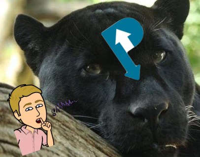 sleeping rules cuck panther