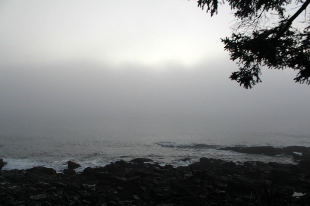 Backlit fog February 21 2018