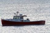 SeaWife1