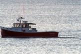 SeaWife7