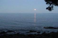 Moon6