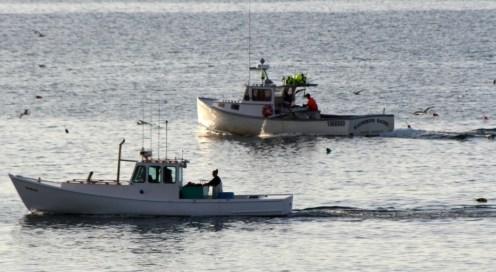 Boats10